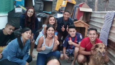 Casal de Guarulhos constrói 'casinhas' para animais de rua