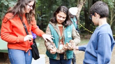 'Férias no Butantan' traz atividades infantis interativas com réplicas de mosquitos e trajes especiais