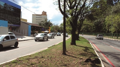 Avenida Paulo Faccini: lazer, entretenimento e gastronomia