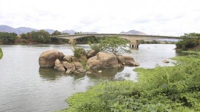 Reflorestamento avança e pesca segue restrita no Rio Doce após 3 anos