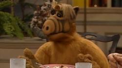Warner Bros. TV desiste de fazer reboot da série clássica 'Alf, o ETeimoso'