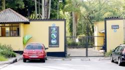 Votação para escolha do mascote do Zoológico de Guarulhos segue até dia 30