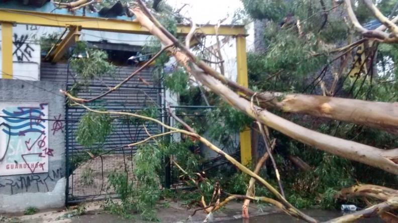 Queda de árvore sobre Estação Elevatória de Água dos Pimentas afeta o abastecimento em 44 bairros