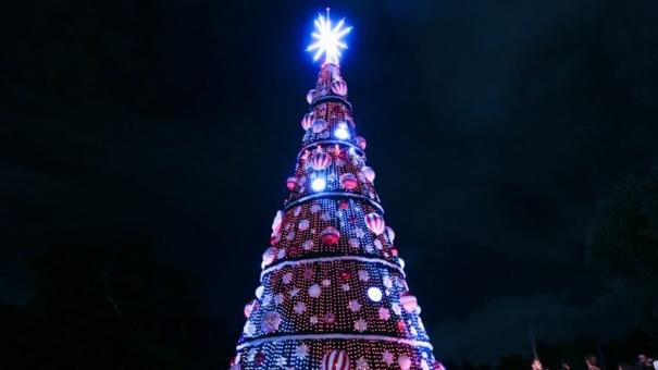 Decoração de Árvore de Natal do Ibirapuera fica em exposição até dia 1