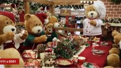 Ceia dos Ursos, oficinas para as crianças e trenó virtual são as atrações do Natal do Shopping Market Place
