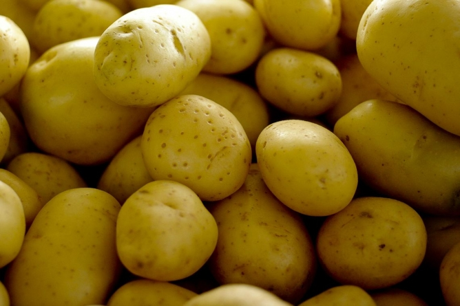 Alta no preço da batata e cebola pode deixar a ceia de Natal mais cara