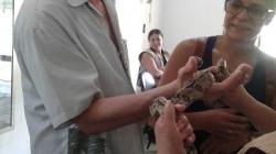 Pessoas com deficiência visual visitam o Zoológico de Guarulhos