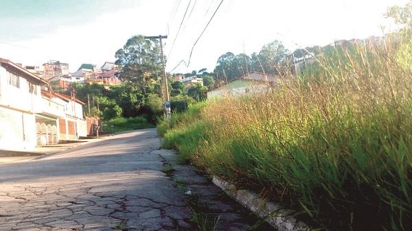 Calçadas do Parque Continental II estão com mato alto e acumulam entulhos
