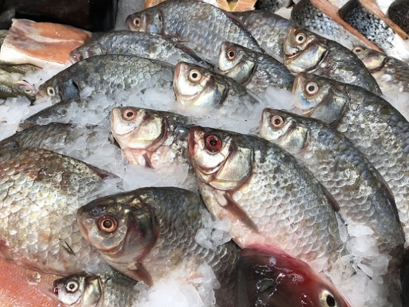 Ipem-SP alerta sobre os cuidados na compra de pescados e ovos de Páscoa