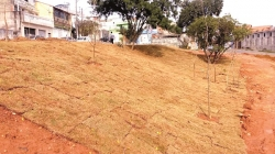 Prefeitura revitaliza antiga área de descarte irregular no Jardim Palmira