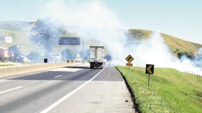 Rodovias que cortam Guarulhos registram quase 300 focos de incêndios