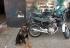 GCM apreende motocicleta adulterada no Jardim Inocoop