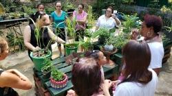Comemoração do Dia Mundial do Meio Ambiente segue com atividades na próxima semana