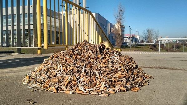 Lixo Zero promove mutirão para recolher bitucas de cigarro no Bosque Maia