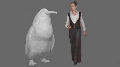 Fóssil de pinguim gigante é encontrado na Nova Zelândia