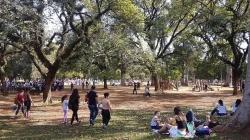 Parque do Ibirapuera comemora 65 anos com programação especial