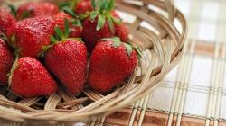 Festival do Morango e Chocolate agita a praça IV Centenário em setembro