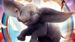 Cine na Praça apresenta live-action do clássico Dumbo no Jardim Vila Galvão