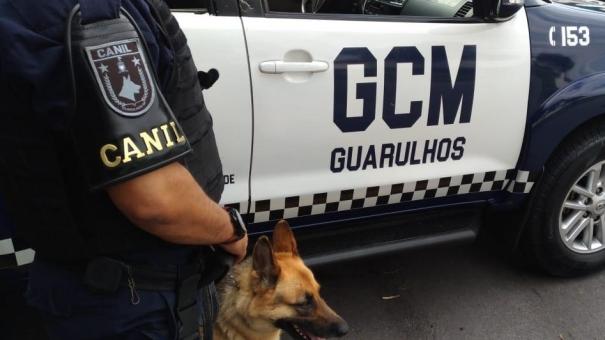 Canil da GCM participa de mantrailing em Araçoiaba da Serra